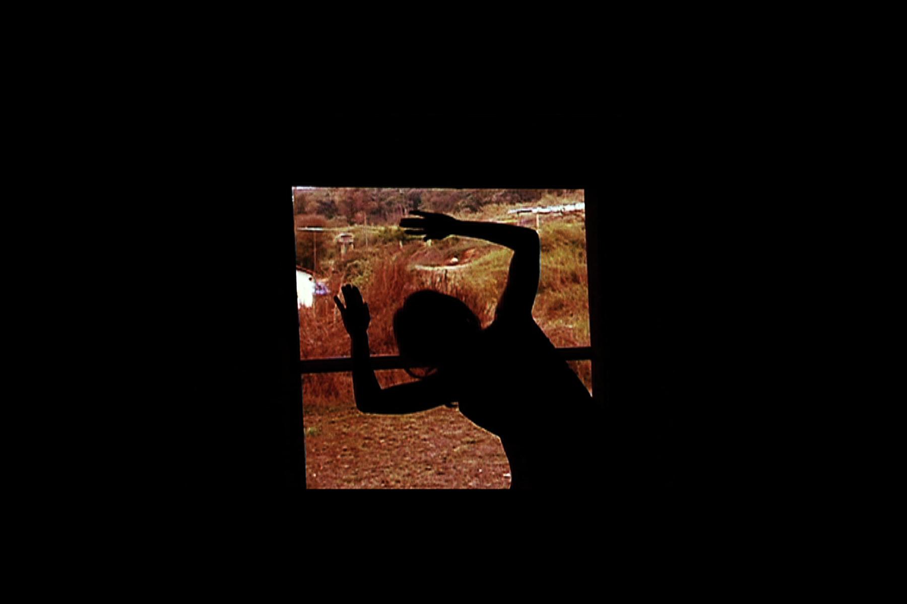 Elogio Da Sombra